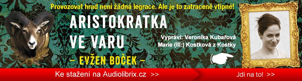 audiokniha-stalker-kepler-cs